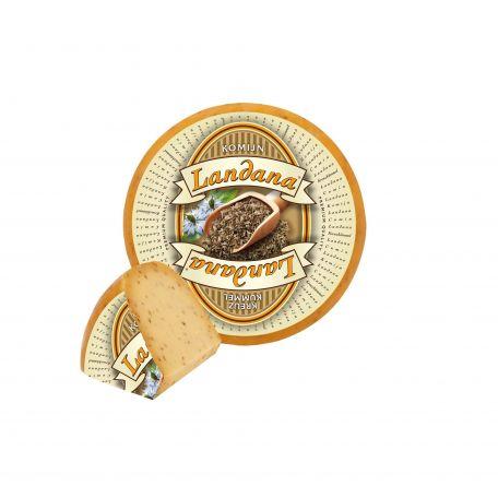 Holland köményes gouda sajt 4kg
