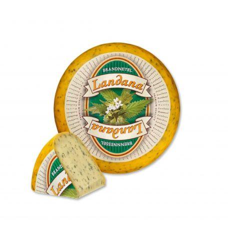 Sajt gouda csalános holland 4kg (elo)