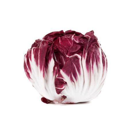 Radicchio saláta