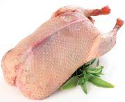 Kacsa grill kacsa (ss) fagy. 1500/1600gr