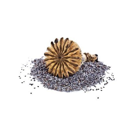 Zeelandia Trendy használatra kész máktöltelék 30% 6kg