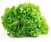 Mosott lollo verde saláta 1db
