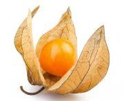 Zsidó cseresznye (physalys) 1db/10 dkg