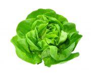 Mosott saláta fejes 1db