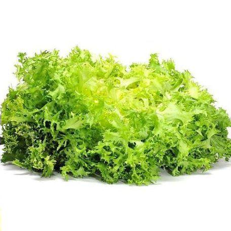 Freeze saláta