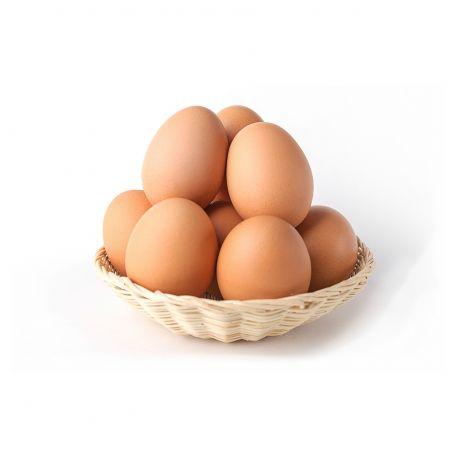 Tojásforyou L méretű fertőtlenített tojás