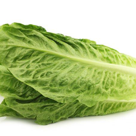 Római saláta mosott